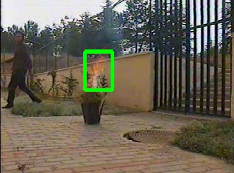 Fire detection in video